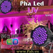 Đèn pha led UV tím phản quang